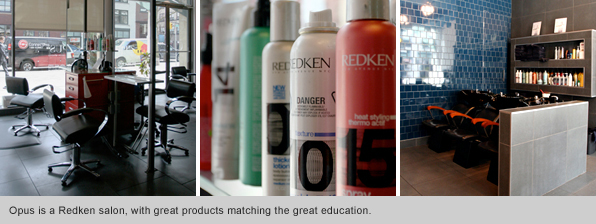 Top Hair School Graduate Richard Vo for Opus Salon: Redken salon