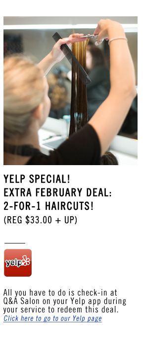 February Hair Specials