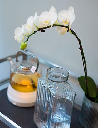 blanche macdonald esthetic gradaute tracy cherniak