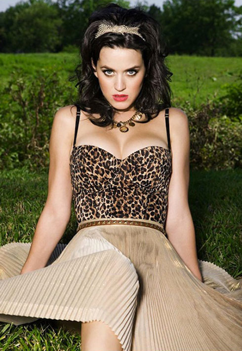 celebrity makeup on katy perry